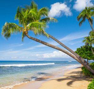 hawaiian-breeze-Thumb