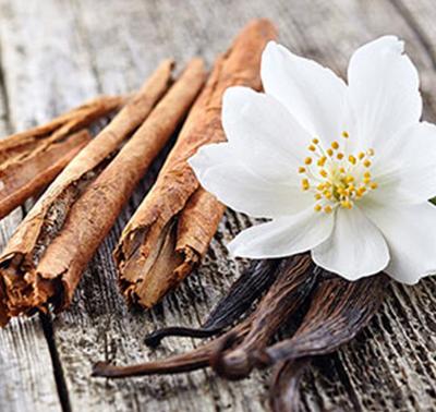 vanilla-cinnamon-Thumb